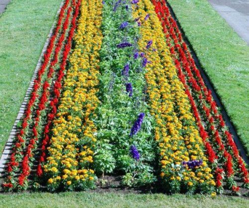 Виды клумб и цветников фото