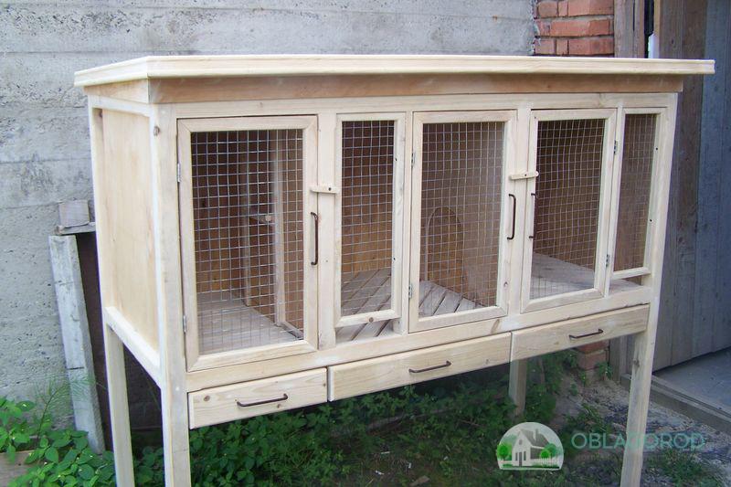 Где и как должны размещаться кролики в домашних условиях.
