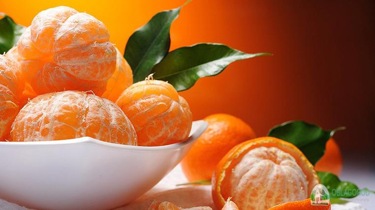 Чем полезны мандарины для здоровья – свойства и состав фруктов