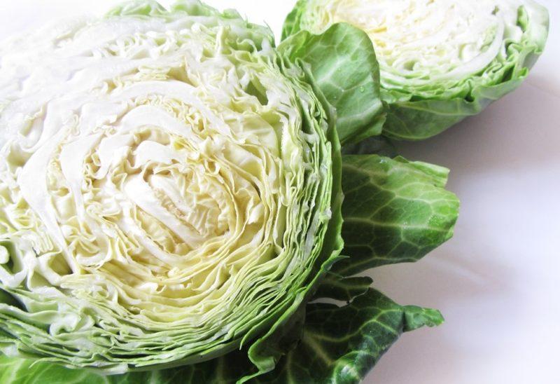 В чем польза белокочанной капусты?