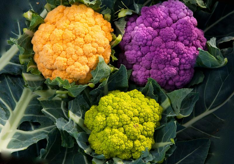 Особенности выращивания цветной капусты в огороде
