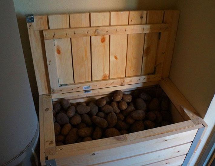 Если в квартире нет балкона, овощи можно держать дома в темном месте.