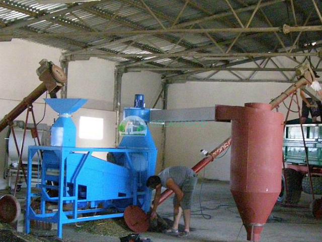 Обработка семян подсолнечника перед хранением