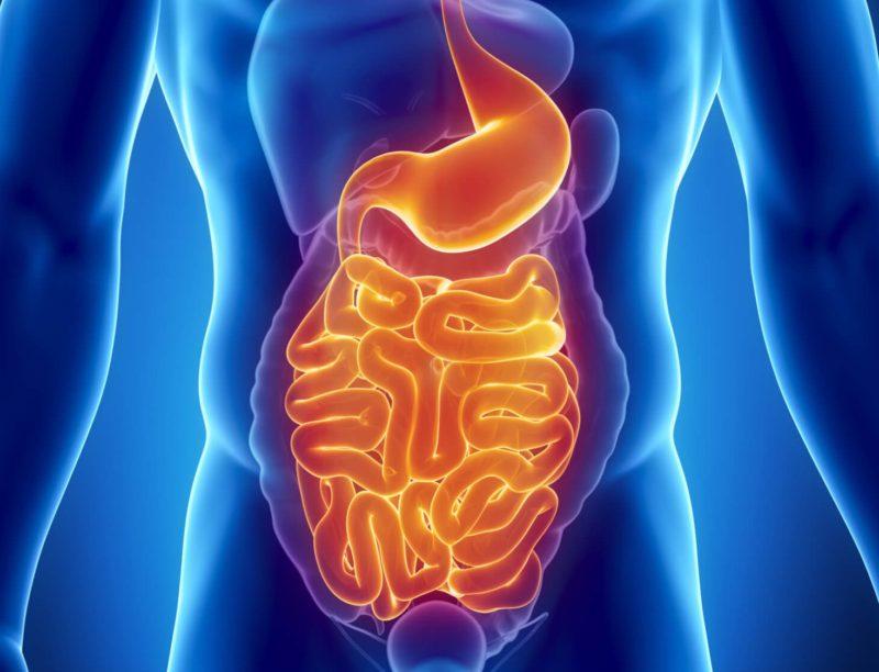 Большое содержание клетчатки может привести к раздражению желудочно-кишечного тракта и двенадцатиперстной кишки