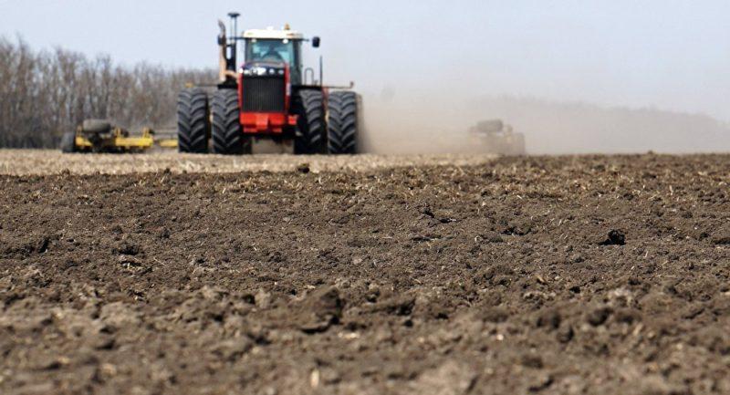 Выполнение непосредственно перед посевом культивации почвы