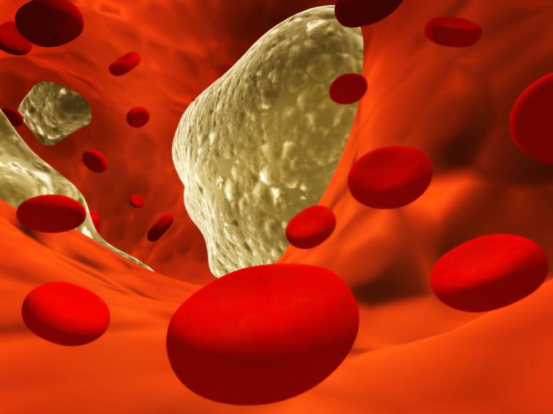 Помидор препятствует снижению холестерина в крови и положительно воздействует на сердечные заболевания