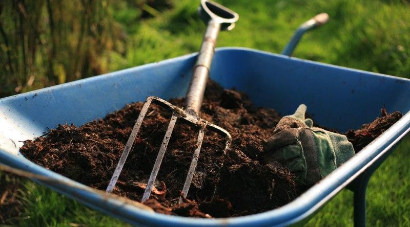 Удобрение вносить только в политую почву
