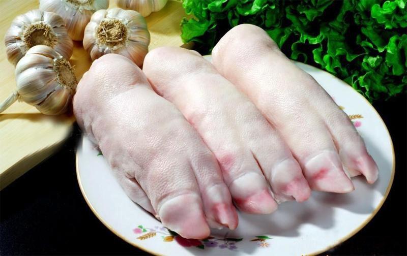 Ножки – нижние части передних и задних ног