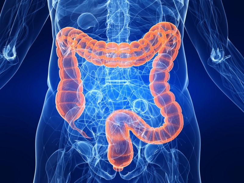 Хронические или инфекционные заболевания желудочно-кишечного тракта