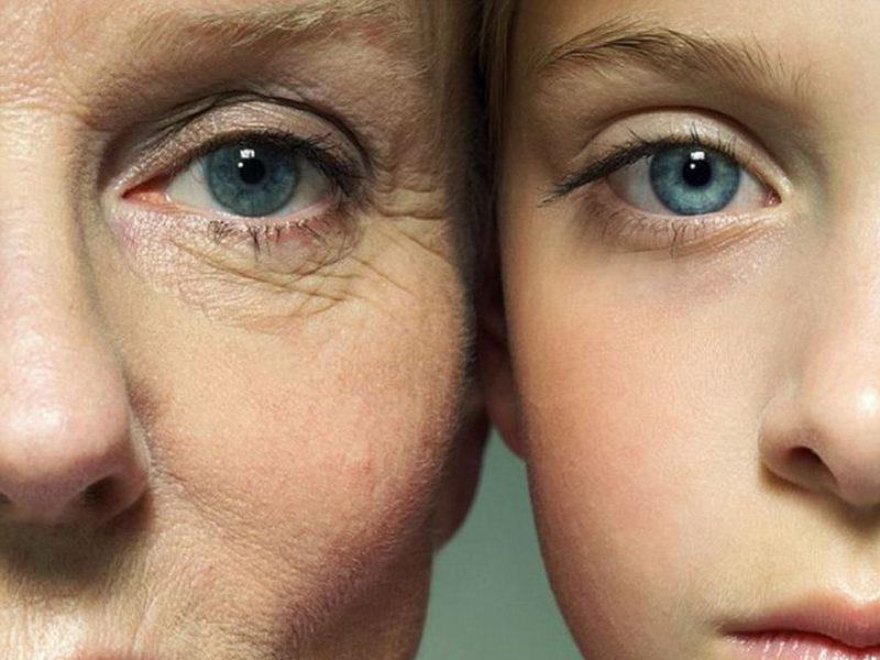 Замедляет процесс старения