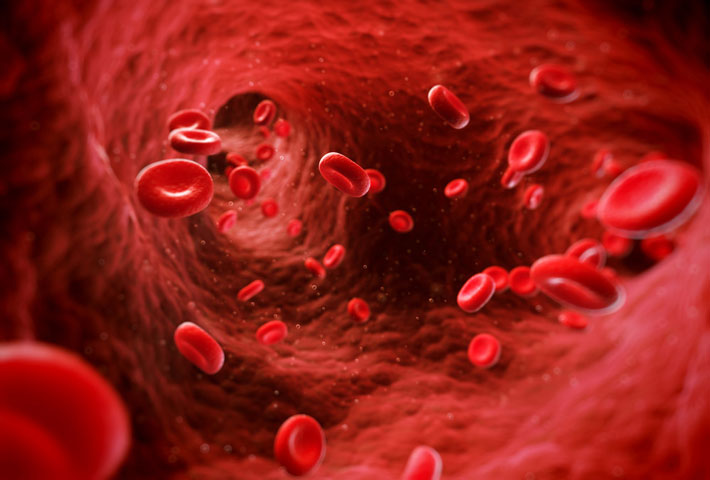 Увеличивает скорость кровообращения
