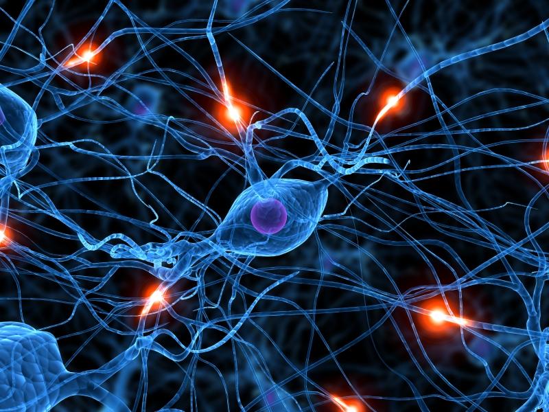 Успокаивание нервной системы
