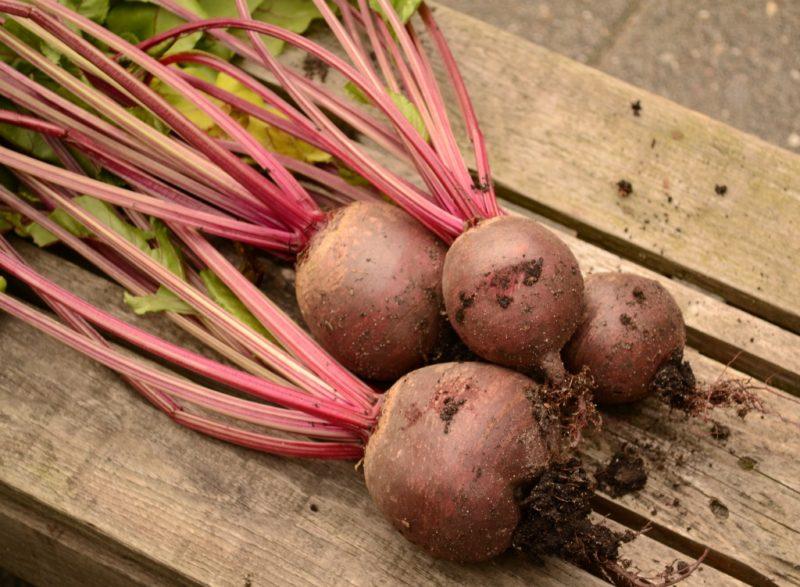 Слишком долго держать овощи под открытым небом тоже не стоит – дело в том, что в результате этого она начнет терять много влаги и, соответственно, увядать.