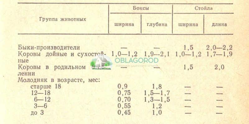 Таблица № 1. Размеры боксов и стойл для крс на промышленных фермах.