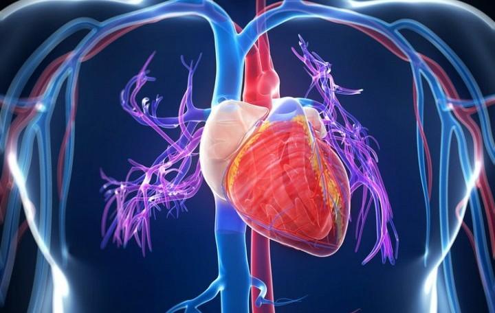 Рекомендуется употреблять людям, страдающим разнообразными заболеваниями сердечнососудистой системы и щитовидной железы