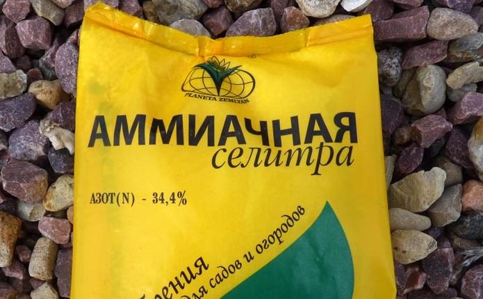 Нитрат аммония представляет собой совершенно безопасный тип удобрения.