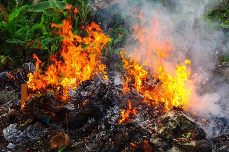 Оставшуюся ботву сжигайте, а теплицы дезинфицируйте хлористой известью