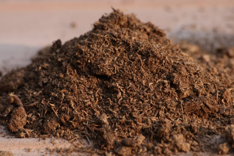 Удобрение почвы осуществляется в вечернее время