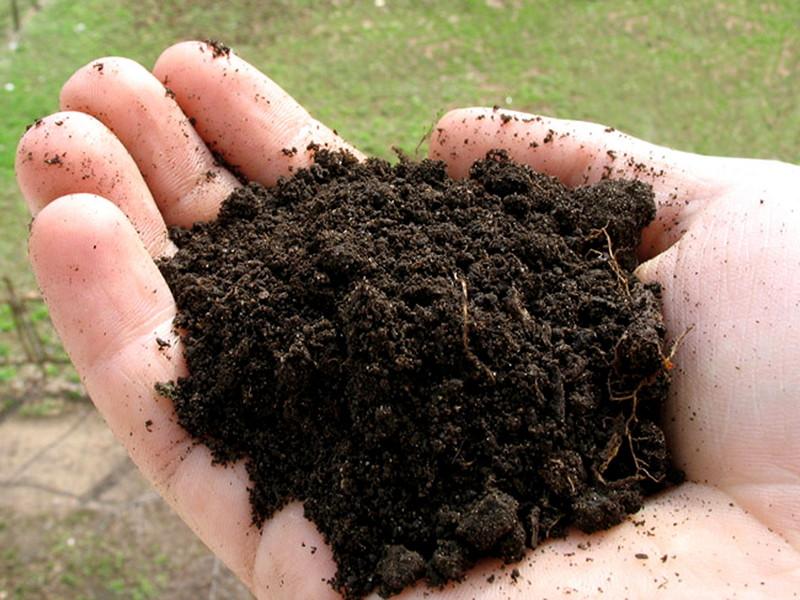 Наиболее часто в качестве защиты используется слой почвы
