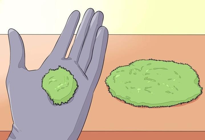 Посадка и выращивание искусственного мха