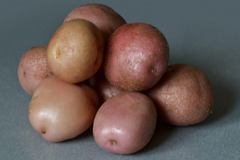 Среднеранние сорта картофеля-находка для вашего стола. фото