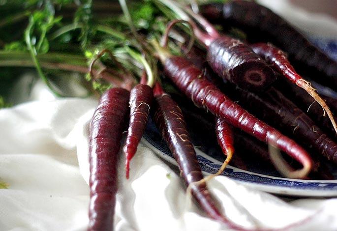 Классификация моркови по цвету фото