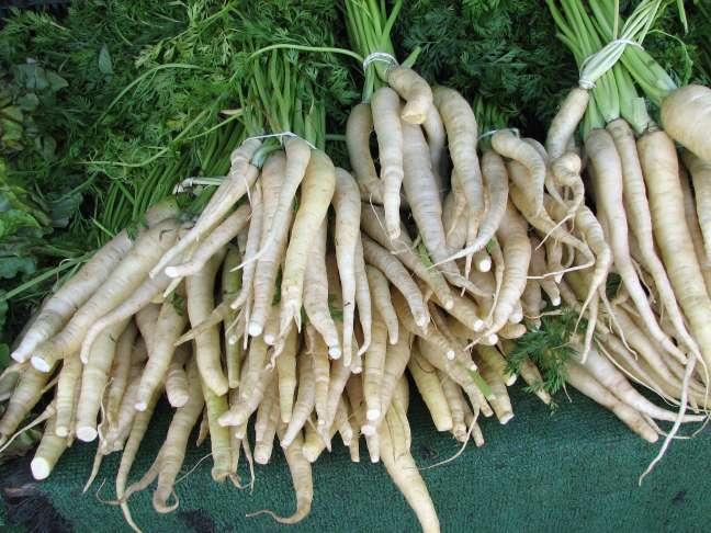 Белая морковь для вашего стола
