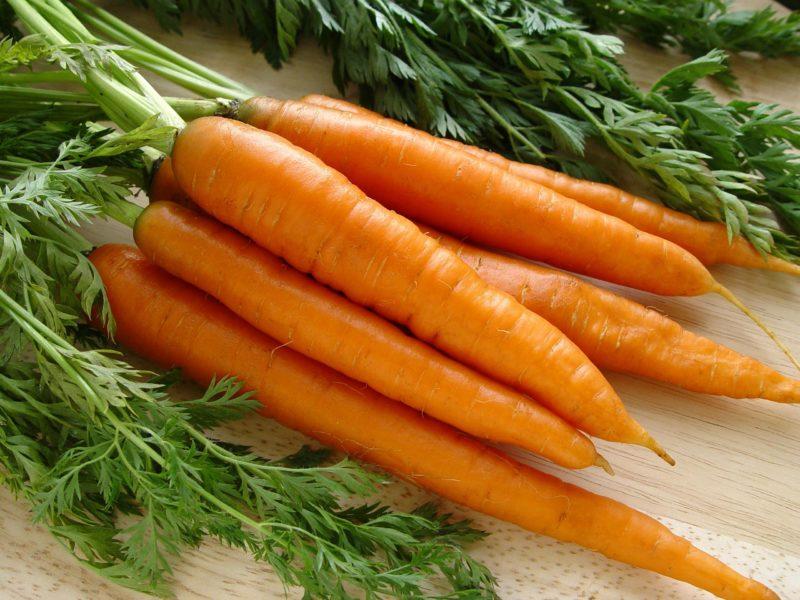 Овощ содержит до 20% полезного вещества, что не может сравниться с его собратьями.
