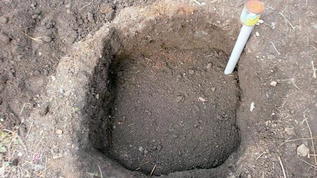 Ошибки при высадке растений