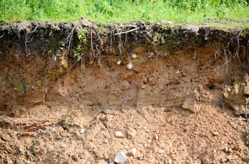 Состав грунта – нетяжелые суглинки