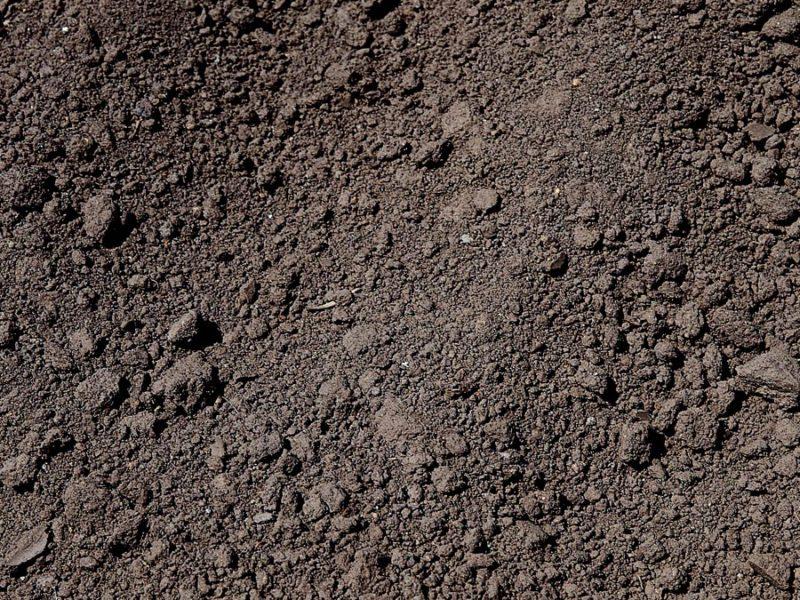 Сверху насыпается слой плодородного чернозема высотой около 10 см