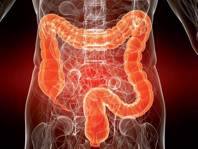 Снижение уровня риска развития онкологических заболеваний кишечника, и дыхательных путей