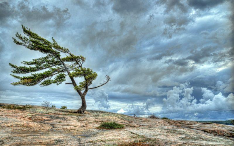 Защита от резких порывов ветра