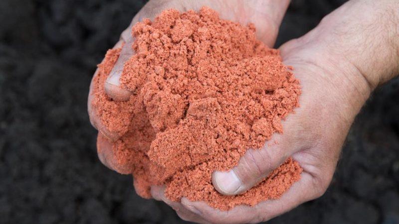 Калиевые удобрения можно вносить каждый год