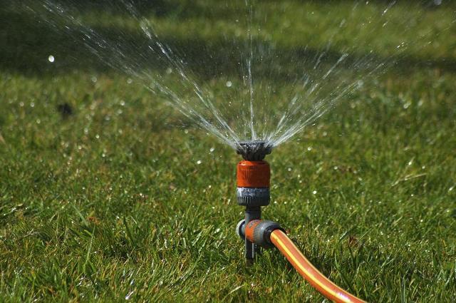 Как высаживать газонную траву осенью