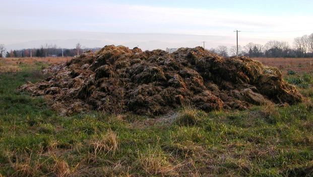 Ускорение процесса компостирования с помощью усилителей